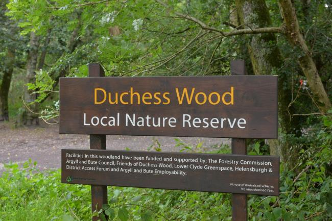 Public access to Helensburgh's Duchess Wood has been officially barred since June (Photo - Kirsty Anderson)