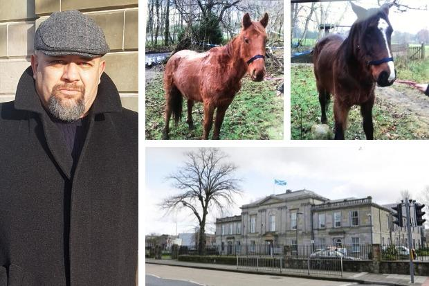 Perparim Tahiraj was convicted of two counts of animal neglect, against five horses, after a three-day trial