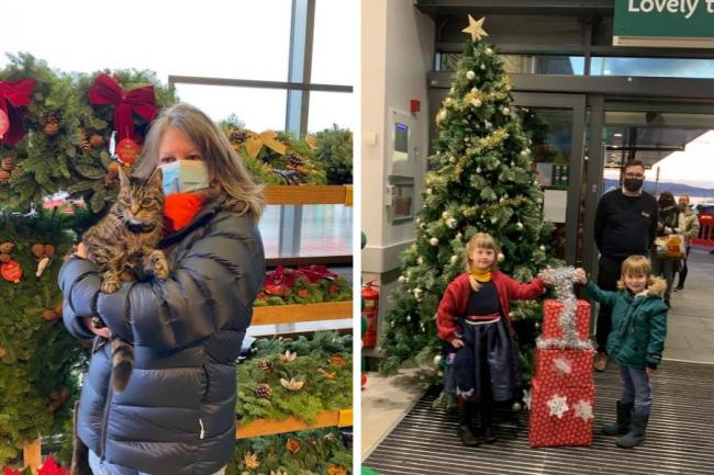George the cat visited the new Morrisons store last week, while local children helped switch on the shop's Christmas tree lights