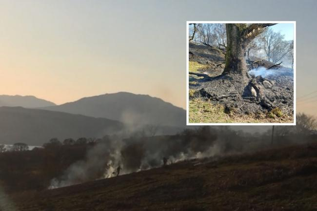 Firefighters beat out a blaze in the hills above Rhu on Sunday and, inset, a fire damaged oak tree in the ancient woodland at Aldonaig