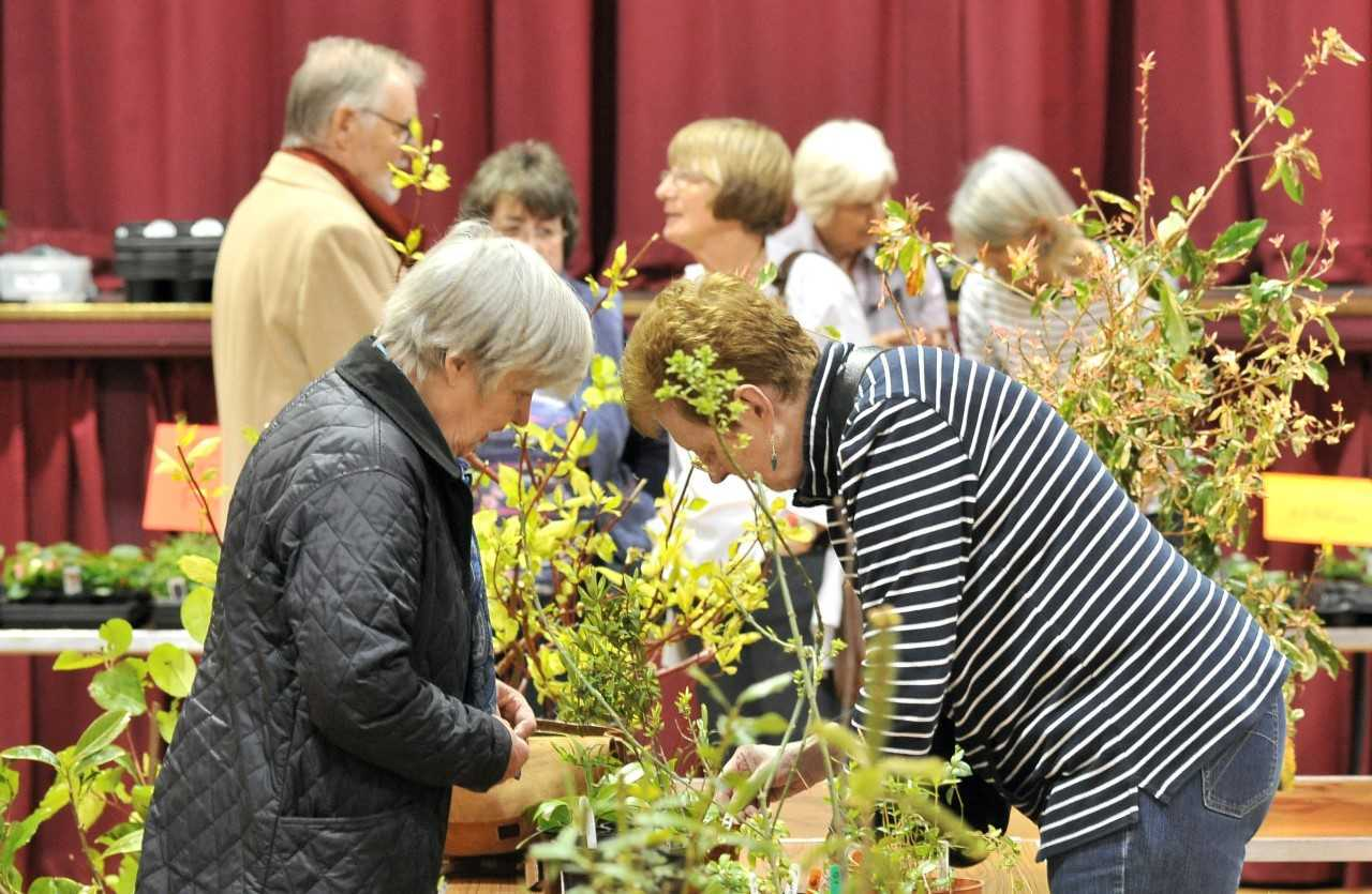 Helensburgh and Gareloch Horticultural Society's annual plant sale takes place on Saturday, May 11